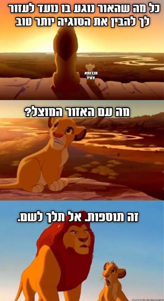 מם מלך האריות